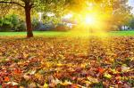 25 hình nền phong cảnh mùa thu lãng mạn cho máy tính số 2