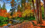 25 hình nền phong cảnh mùa thu lãng mạn cho máy tính số 1