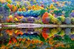 25 hình nền phong cảnh mùa thu lãng mạn cho máy tính số 17