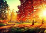 25 hình nền phong cảnh mùa thu lãng mạn cho máy tính số 16