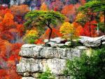25 hình nền phong cảnh mùa thu lãng mạn cho máy tính số 22