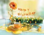 20 hình ảnh hoa chúc mừng sinh nhật độc đáo không nên bỏ qua số 19