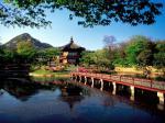 Hình nền cung điện hoàng gia Gyeongbok