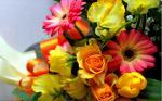 Những bó hoa chúc mừng sinh nhật người yêu dễ thương số 1