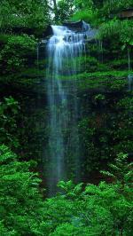 Hình nền thác nước 13