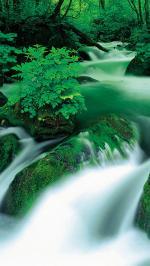 Hình nền thác nước 5