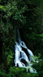 Hình nền thác nước 1