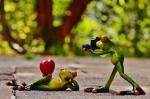 Hoàng tử ếch 14