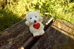 Hình nền tình yêu 16