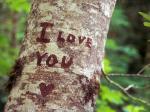 Những hình nền chữ i love you đẹp và ý nghĩa không thể bỏ qua số 7