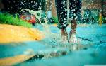 Hình nền mưa 4