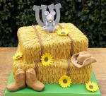 Mẫu bánh sinh nhật 3D độc đáo và sáng tạo - 11