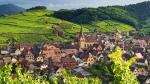 Thành phố nằm trên Tuyến đường Rượu vang Alsace và các vườn nho địa phương chuyên về rượu vang Riesling và Gewürztraminer.