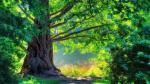 Hình nền máy tính thiên nhiên xanh mát xua tan nắng nóng -1