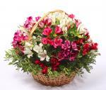 Lẵng hoa tươi chúc mừng sinh nhật không thể ngọt ngào hơn - 10