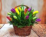 Lẵng hoa tươi chúc mừng sinh nhật không thể ngọt ngào hơn - 20