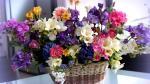 Lẵng hoa tươi chúc mừng sinh nhật không thể ngọt ngào hơn - 9