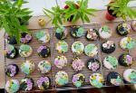 Bánh Trung thu 3D hoa nổi đẹp lung linh không thể bỏ lỡ - 2