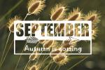 Tải về bộ ảnh bìa facebook chào tháng 9 - Hello September đẹp lung linh