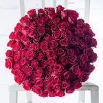 Bó hoa hồng đỏ đẹp nhất 2019 - Món quà lãng mạn gửi đến người yêu thương - 20
