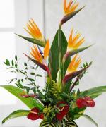 Những bó hoa tặng sinh nhật Sếp đẹp tinh tế và sang trọng nhất - 3