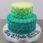 Hình ảnh những mẫu bánh sinh nhật màu xanh, xanh dương, xanh ngọc đẹp nhất- 6