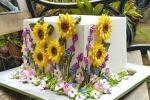 Top bánh sinh nhật hoa đẹp, ý nghĩa gửi tặng những người thân yêu