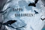 Mời tải về bộ ảnh bìa halloween kinh dị mới nhất