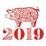 Vector heo vàng 2019, Pig Vector, Vector heo tết Kỷ Hợi mới nhất cho Designer - 7