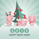 Tải vector heo tết 2019, vector con heo mừng năm mới 2019 cực dễ thương - hình 2