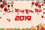 Trọn bộ cover ảnh bìa năm mới tết 2019 mừng xuân Kỷ Hợi đẹp nhất