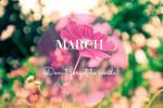 Sưu tầm ảnh bìa cover facebook tháng 3 đẹp lung linh nhất