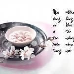 Mai vàng nở rộ đón xuân sang - Đào hồng khoe sắc mừng năm mới