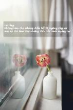 Hình ảnh chân lý cuộc sốngý nghĩa- Hình 6