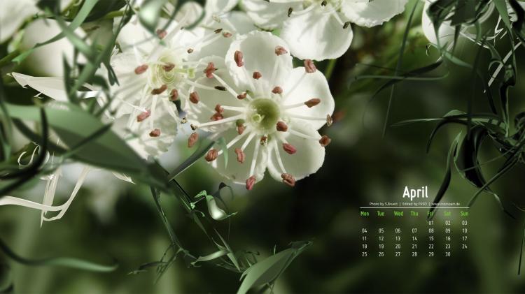 Hình nền tháng 4 13