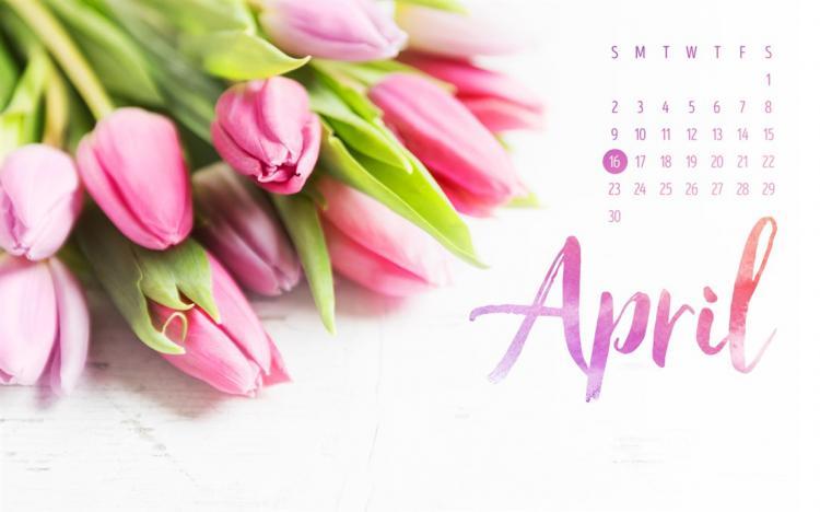 Hình nền tháng 4 04